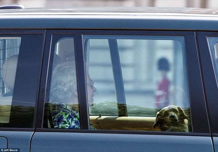Queen Elizabeth II arrives at Buckingham Palace from Windsor Castle to await the birth of baby Cambridge, July 22, 2013