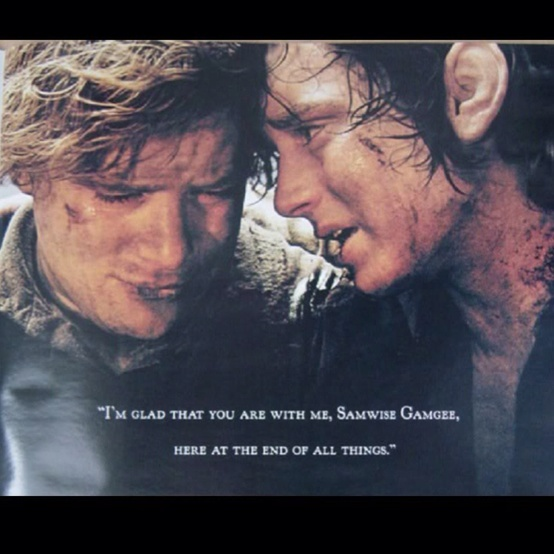 Samwise Gamgee and Frodo Baggins || I ain't crying.. || Lord of the rings