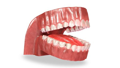 Dental App is a revolutionary 3D interactive technology to simulate human mouth. Dental app is tailored for dentists and orthodontist. <br>Doctors in dentistry can use the app to simulate procedures such as Braces Before & After or  dental implants or den http://getfreecharcoaltoothpaste.tumblr.com