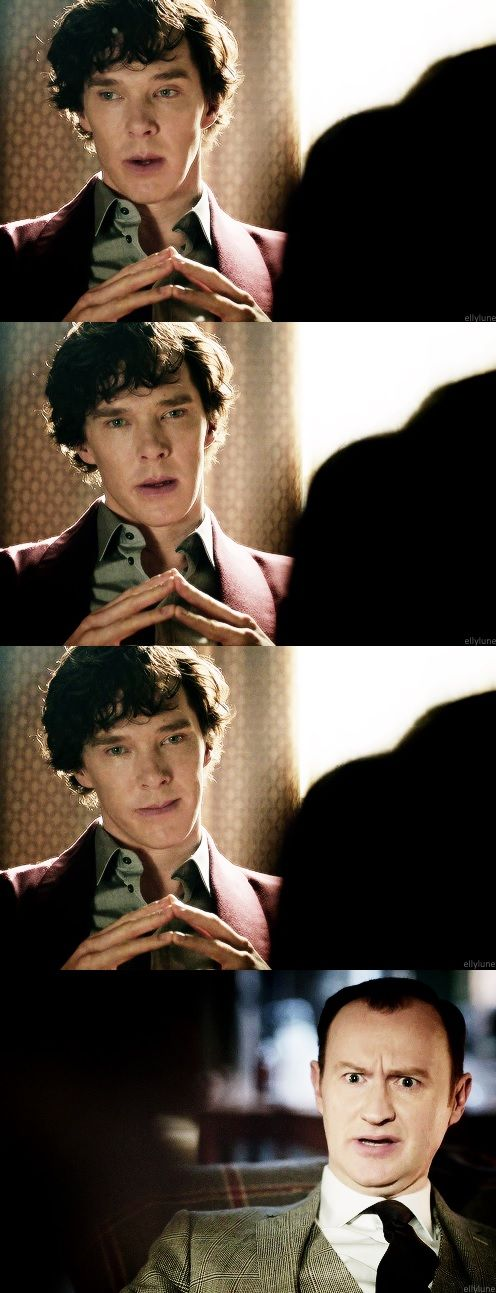 S: Oh I don't know, I thought perhaps you might have found yourself a…goldfish. - M: Change the subject, NOW. -- Mycroft and #Sherlock series 3 episode 1: The Empty Hearse