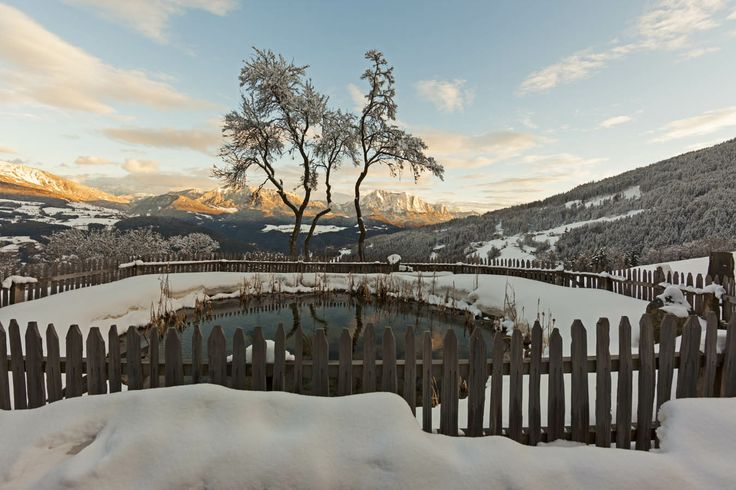 Naturpool im Winter mit Blick auf Dolomiten - Villanders/Vilandro - Südtirol/Alto Adige Roter Hahn/Gallo Rosso