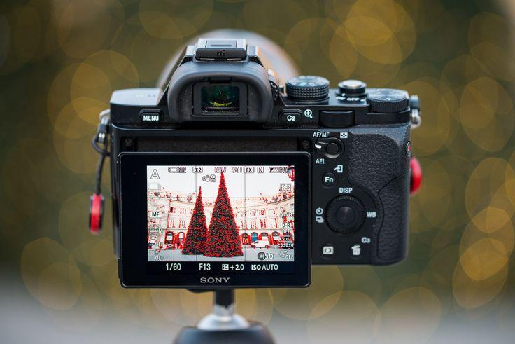 La mise au point en photographie, c'est toute une histoire en photographie et en vidéo. Pour aider le photographe dans cette tache, une fonction très utile a fait son apparition depuis les viseurs électroniques et les appareils hybrides : l'intensification de la mise au point, plus couramment appelée « focus peaking ». Qu'est-ce que le focus peaking et à quoi sert-il ? C'est ce que nous allons voir dans ce Mercredi Pratique.
