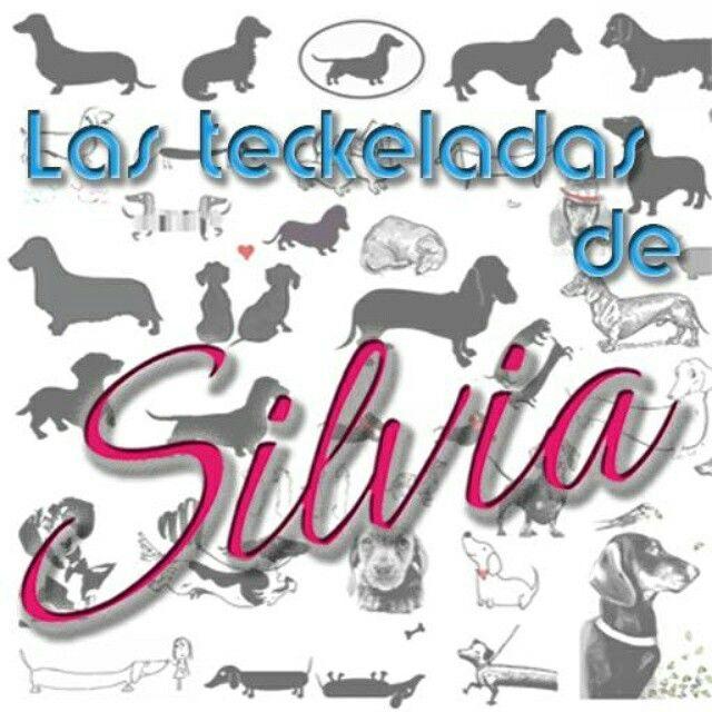 Las teckeladas de Silvia en Facebook