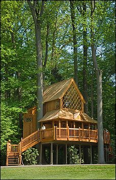 The two-story Canopy Cathedral was inspired by old Norwegian churches. Longwood Gardens, Kennett, PA - Tree House Masters TV show. Pete Nelson - Master Builder