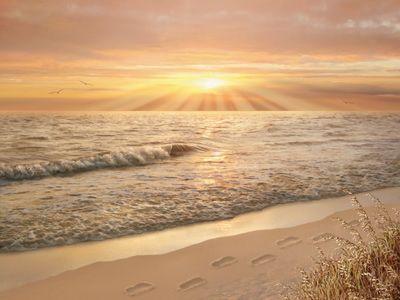 Footprints In The Sand Mural - Alan Giana| Murals Your Way
