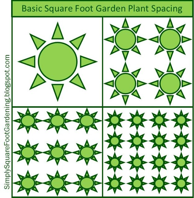 square foot gardening feet spacing template mustard greens kale