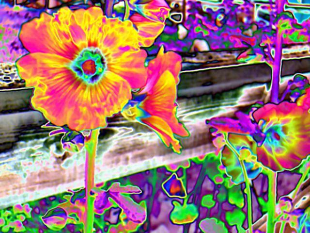 Acid Trip | acid trip graphics and comments