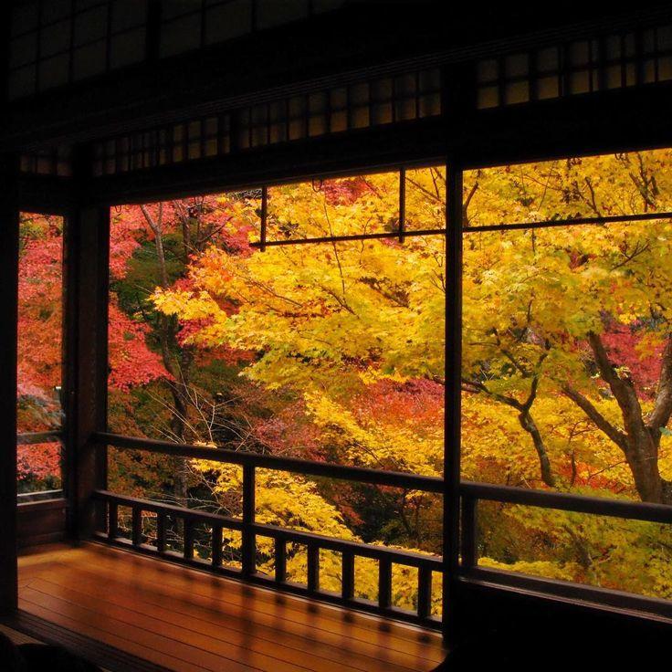 こんな天気は外遊びしたい (´-ω-`)… 水曜日が待ち遠しいなぁ…  昨年の八瀬の瑠璃光院です。  #sonyalpha #SonyImages#SonyAlphasClub  #SonyPhotoGallery  #igersJP#ig_japan #lovers_nippon#wu_Japan  #icu_japan#ig_nihon#Loves_Nippon  #ファインダー越しの私の世界 #写真好きな人と繋がりたい#写真撮ってる人と繋がりたい #京都#Kyoto#そうだ京都へ行こう#京都だいすき#そうだ京都行こう#japan_daytime_view #japan_photo_now#床紅葉#REFLECTION#リフレクション#瑠璃光院#洛北#東京カメラ部#Tokyocameraclub#InstagramJapan#photo_shorttrip