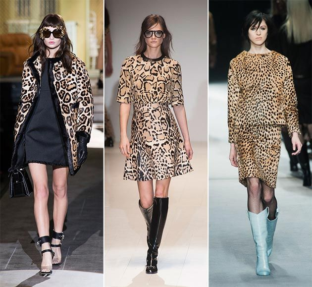 Fall/ Winter 2014-2015 Print Trends
