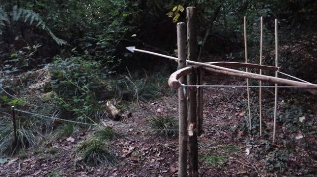 Bow Trap   5 Sneaky Survival Snare Traps to Keep You Alive