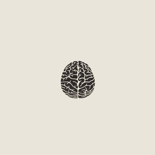 To do list: Find a poster of the brain. Buy said poster. Hang it on my wall…