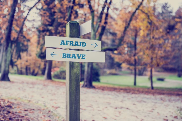 Tweet How to Be Brave           3 Characteristics of Brave Women By Raychel Chumley   When you think of a brave woman you often think of names like Amelia Earhart, Rosa Parks, Barbara Walters, etc. These women were courageous and …