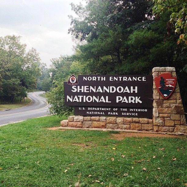 70 Best Blue Ridge Pkwy, Skyline Dr., Smoky Mts. Virginia