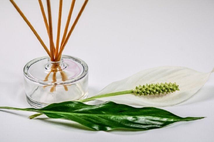 Faites votre propre DIFFUSEUR d'huiles essentielles à BÂTONNETS pour une FRACTION du prix !