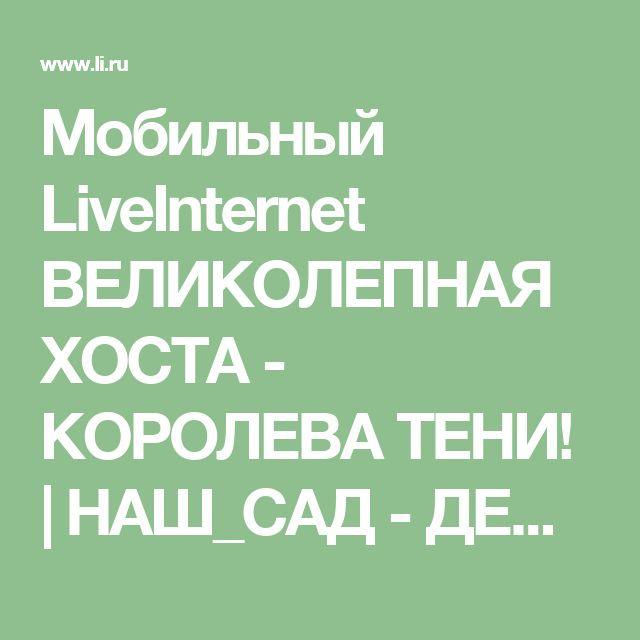 Мобильный LiveInternet ВЕЛИКОЛЕПНАЯ ХОСТА - КОРОЛЕВА ТЕНИ! | НАШ_САД - ДЕЛА НАШИ САДОВЫЕ |