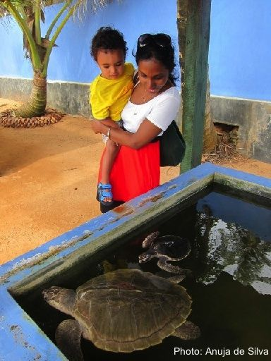 Best Things to do with a toddler in Sri Lanka- Anuja De Silva for FamiliesGo