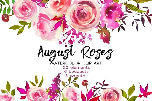 August Roses Watercolor Clip Art by whiteheartdesign on @creativemarket