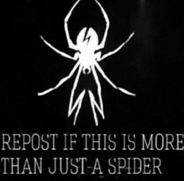 1.Arachnaphobic (if that's how you spell it) so don't scare me like that  2. MY FANDOMS