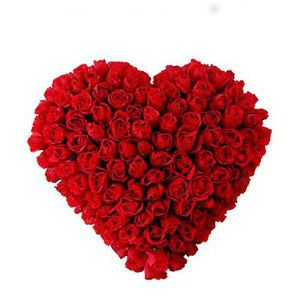 "Convey the message of eternal love and togetherness with ""My Heart for You."" The incredible floral arrangement makes the perfect gift on any occasion. • Made from 100 ravishing red roses to express your indomitable love • Meticulously handcrafted in heart shape that represents your heart • Perfect for anniversary, birthday, Valentine's Day, and wedding http://flowershop18.in/flowers-to-delhi.aspx"