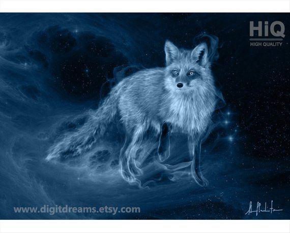 S042b: Fox – portrait