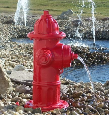 Mueller Centurion Fire Hydrant Fountain Kit - This is AWESOME!! We need these for the dog park at work!!
