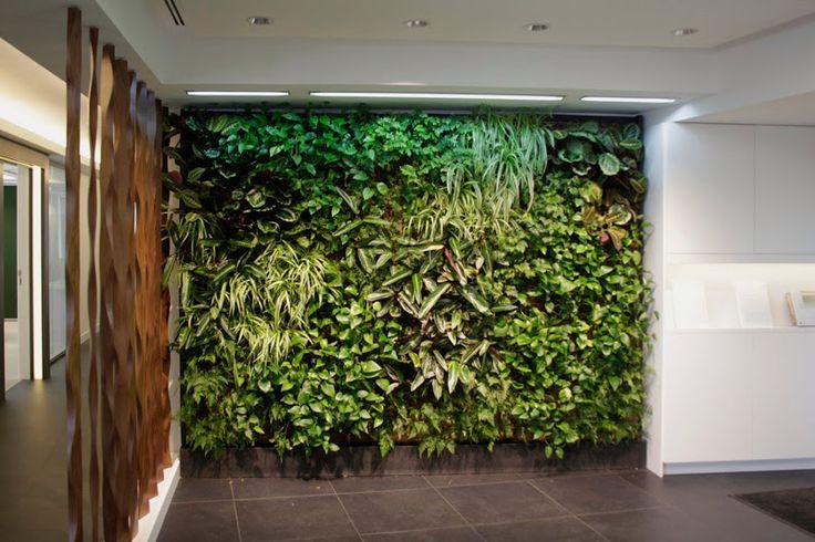 El jardín… ¡en la pared! Paredes vivientes con plantas