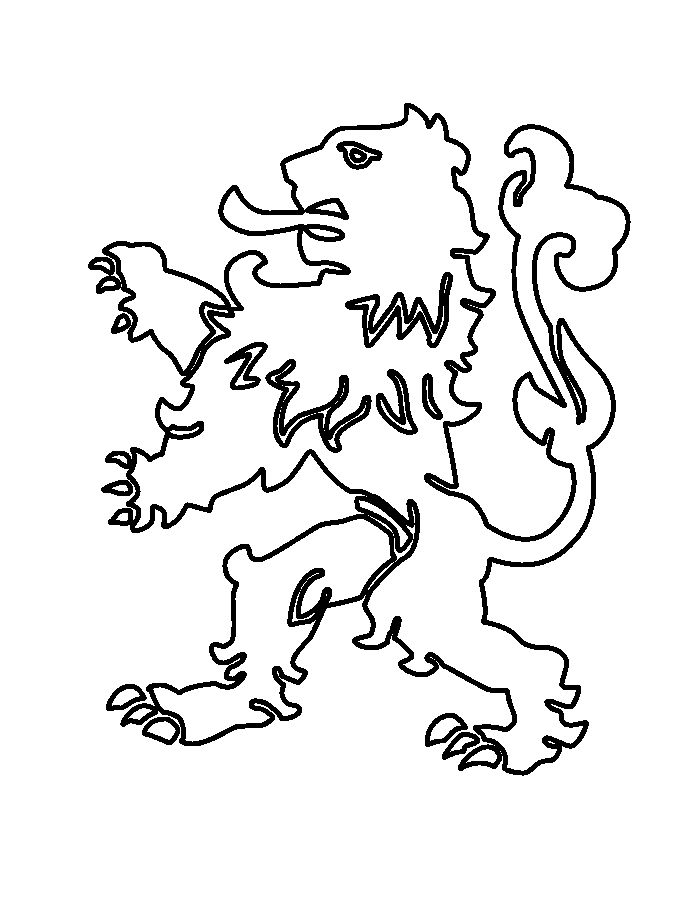 nederlandse-leeuw-voetbal #voetbal
