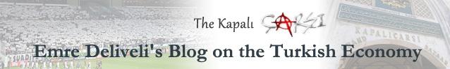Turkey: The economics of #OccupyGezi + Oppression to Media