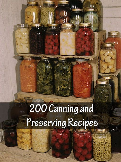 1647 best canning food preservation images on pinterest over 200 canning and preserving recipes 200 canning and preserving recipes perhaps you see the pallets of canning jars at the hardware stores and forumfinder Gallery