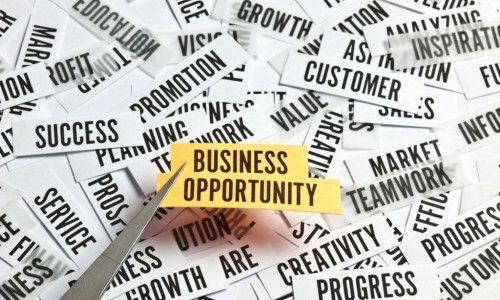 Bisnis Yang Menjanjikan