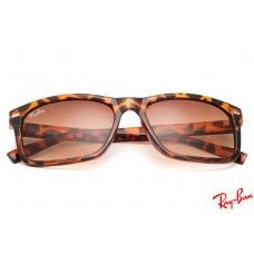 Ray Ban RB20251 Wayfarer sunglasses with tortoise frame and brown lenses