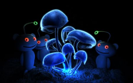 Fluorescence(Visited by Reddit Aliens