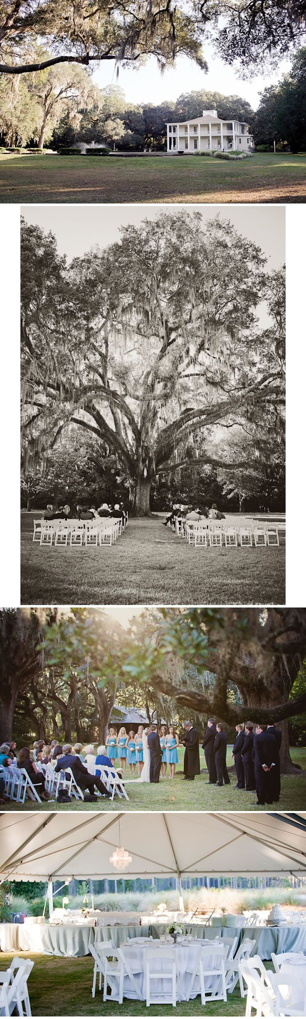 Eden Gardens State Park -florida wedding