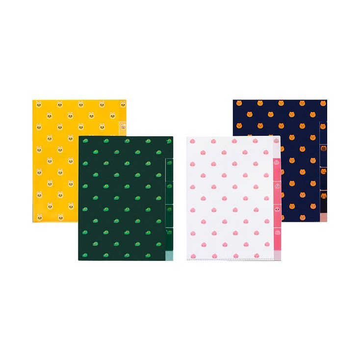 Kakao Friends Characters 5 Pockets A4 Clear File Document Folder #Kakaofriends