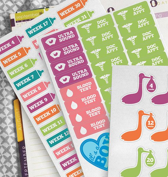 Pregnancy Planner Stickers || Great for Erin Condren, The Happy Planner, Plum Planner or Filofax!