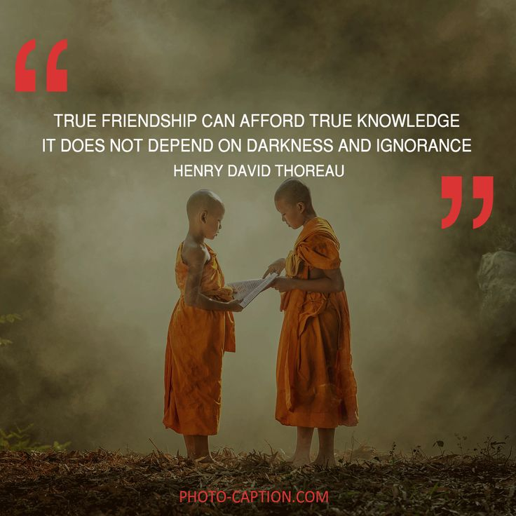 ''True friendship can afford true knowledge it does not depend on darkness and ignorance.''Henry David Thoreau Check out the link in the bio for more best friend captions #friendship #bestfriend #love #BOYFRIEND #happy #friend #best #bestie #quotegram #quoteoftheday #photocaption #quote #quotes #quotegram #quoteoftheday #caption #captions #photocaption #FF #instafollow #l4l #tagforlikes #followback