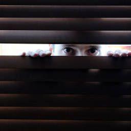 What is Paranoid Schizophrenia?
