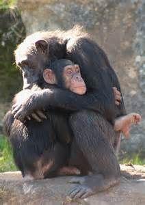 I need a tight hug.