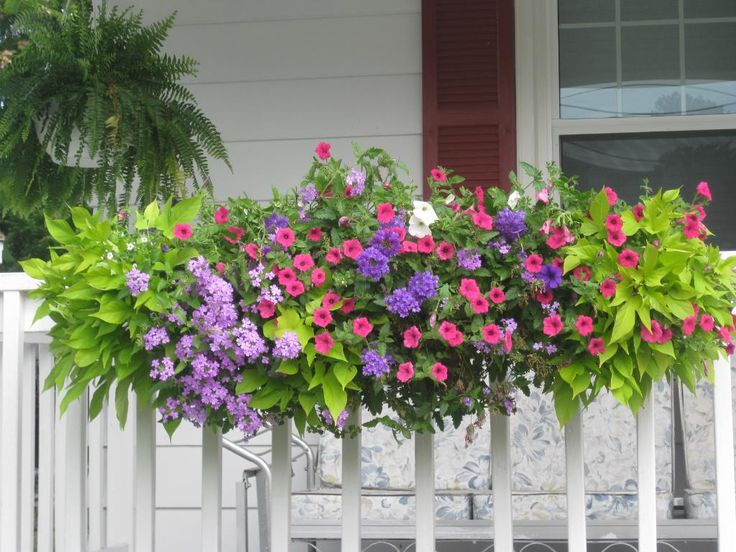 Venture away from your window and add a flower box to - Planters to hang on railing ...