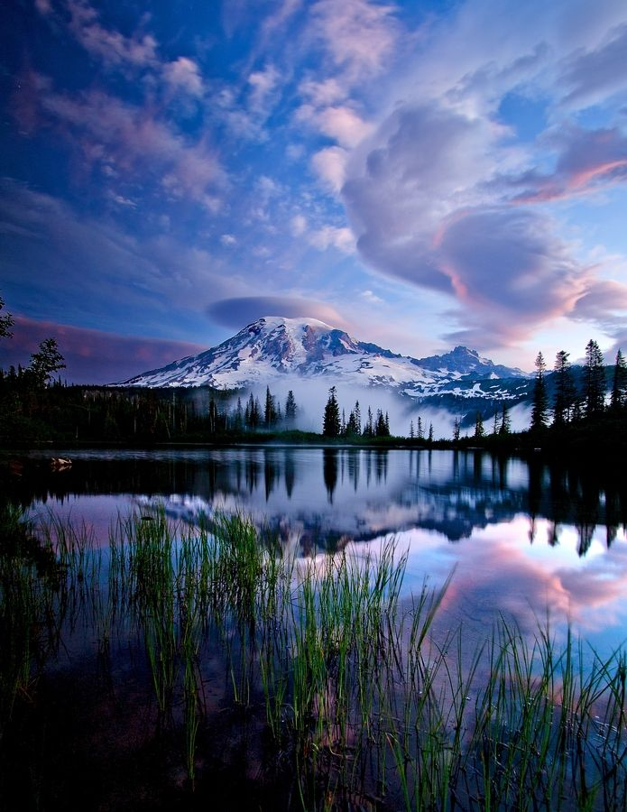 Enjoy the gorgeous Mount Rainer National Park.