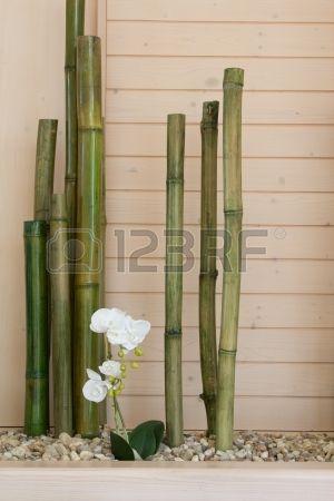 39 mejores im genes sobre jardines en pinterest plantas - Canas de bambu decoracion exterior ...