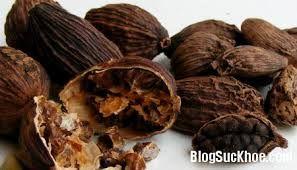 Thảo quả (nutmeg)