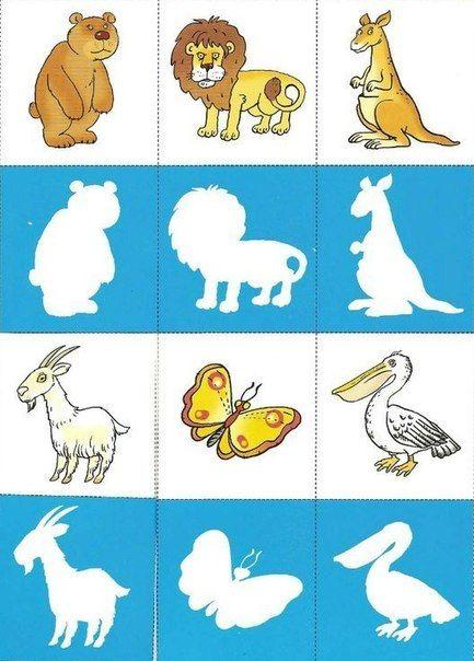 dieren en hun silhouet 3