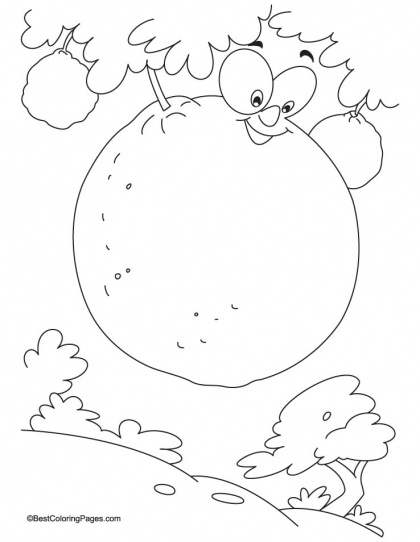 orange coloring pages for kids - photo#25