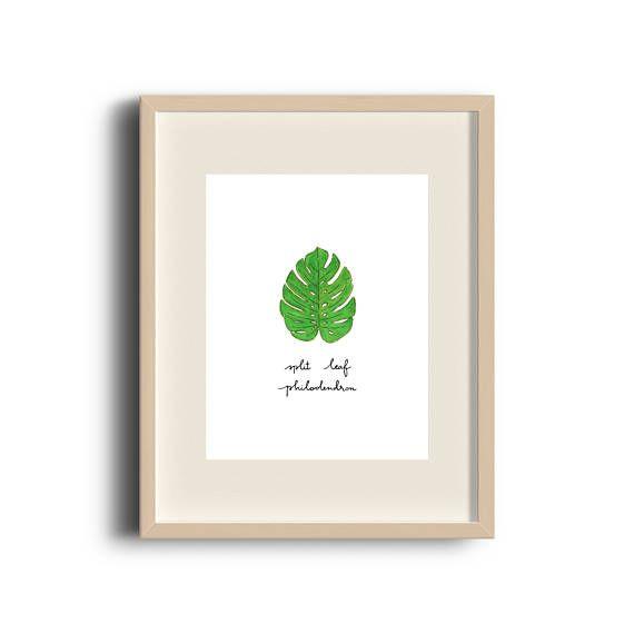 Split Leaf Philodendron   Monstera   Art Print   Etsy Shop   Nature   Tropical Print   by Élana Camille #ElanaCamilleCreates