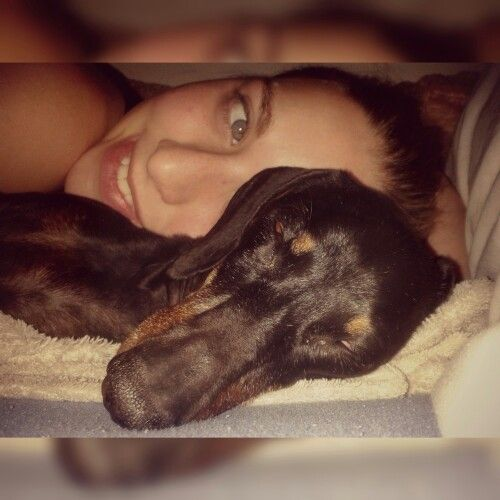 My wiener dog :) Tessa