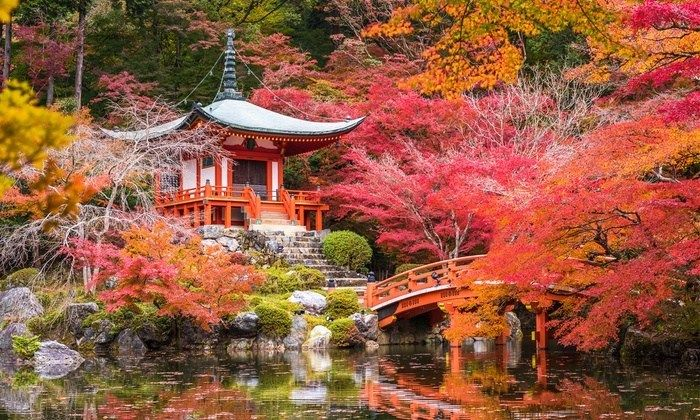 Japan Guided Tour with Hotels and Air
