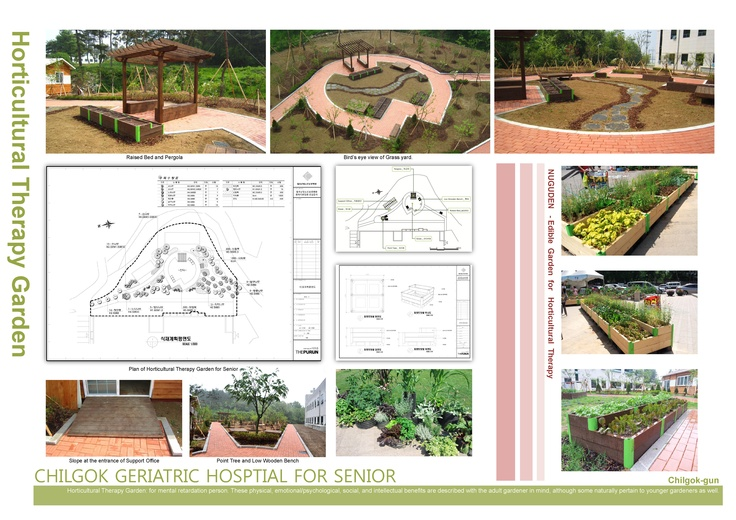 8 best peartree school images on pinterest kindergarten for Garden design for disabled