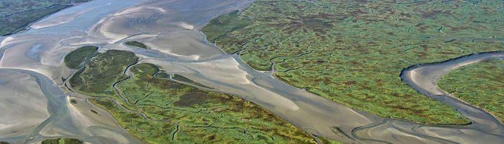 Zeekleilandschap - Geologie van Nederland