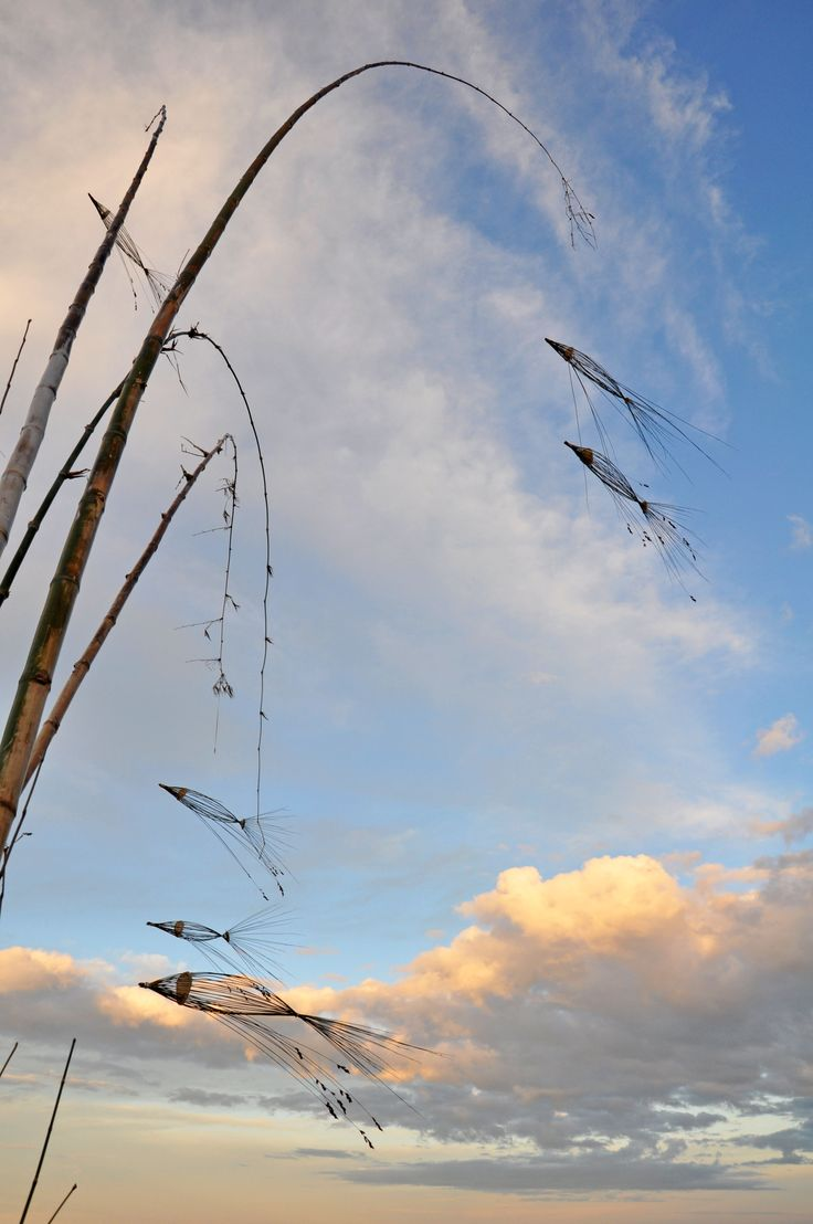 DROPBOX 20 Aug. Wendy Sanderson-Smith (photo). Sweet fish fly in a warm moon sky. 'Go with The Flow/Flying Fish' by Ken Heyns and Margie Ford. Site_Specific #LandArtBiennale. #LandArt #Plett